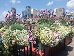 parterre garden services best
