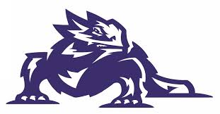 Ncaa1198 Tcu Horned Frogs Mascot Logo Die Cut Vinyl Graphic Decal Sticker Ncaa
