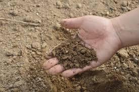 soil sterilization techniques ideas