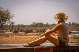safari shirts for men and women