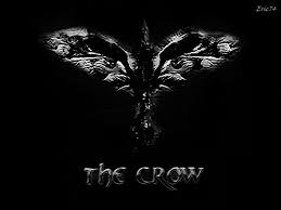 the crow wallpapers wallpaper cave