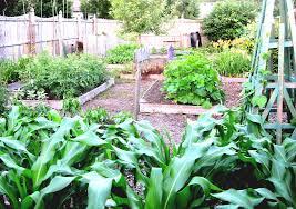 vegetable garden planning software free