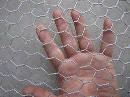 Chicken Wire Mesh Cheapest Zoo Mesh For Peacock And Other Birds
