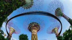 gardens by the bay visit singapore