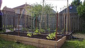 The Benefits Of Raised Garden Beds Finegardening