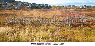 A Wooden Fence That Is An Effective Barrier To Keep Animals Out Of Traditional Root Cellar Gardens Stock Photo Alamy