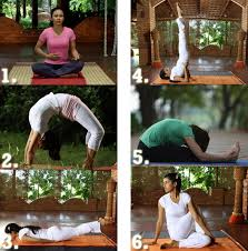 yoga poses to control high cholesterol