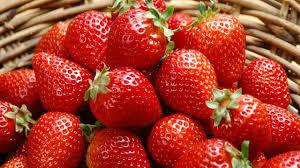Hasil gambar untuk strawberry
