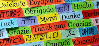 quotes that will give you an attitude of gratitude on