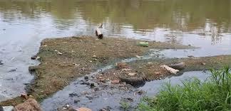 Esgoto sem tratamento é despejado no Rio Paraguai em Mato Grosso