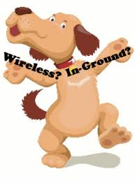 5 Differences Between Wireless And In Ground Dog Fences Dig Your Dog