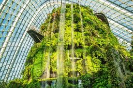 cloud forest dome at gardens by the bay