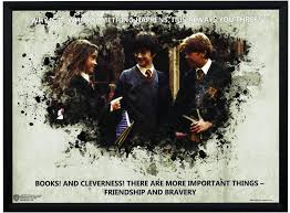 wb official licensed harry potter friendship and bravery quote