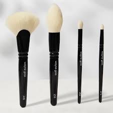 wayne goss the synthetics brush set for