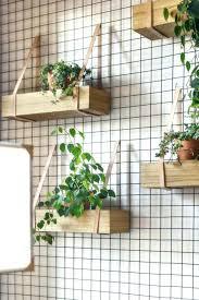 indoor vertical garden diy indoor wall