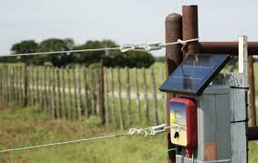 Best Electric Fence Charger For Cattle That Is Effective Safe 2019 Teknologi Kesehatan