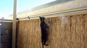 Cat Proof Fence Youtube