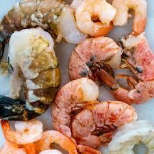 types and sizes of shrimp jessica gavin