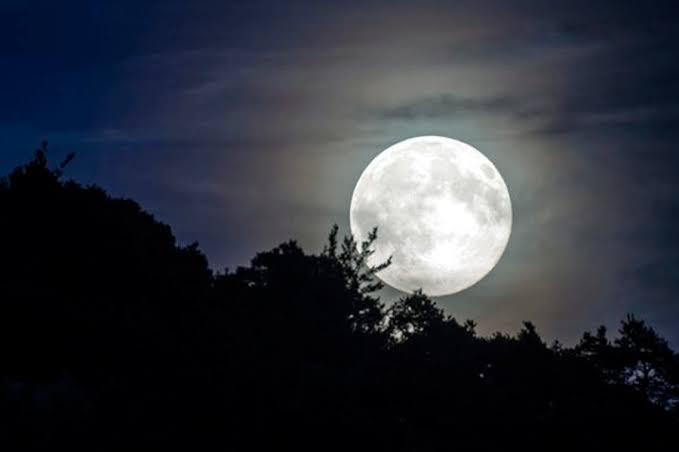 Senryu a la luna