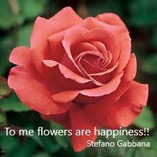 flowers quotes about everything