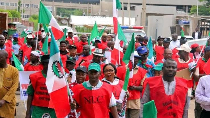 "Image result for nigeria labour congress"""