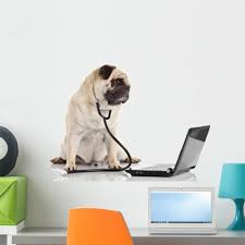 Latitude Run Pug Dog With Stethoscope And Laptop Peel And Stick Graphic Wall Decal Wayfair