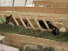 Anyone With Pics Plans Of Large Hay Feeders The Goat Spot Goat Forum Goat Feeder Goat Barn Goat Hay Feeder