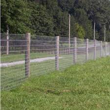 Field Fence Wire Farm Fence By Hot Dipped Galvanized Wire For Cattle Deer For Sale Wire Fencing Manufacturer From China 107262084