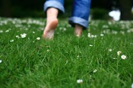 Feeling a little off lately? Try taking a barefoot walk on the ...