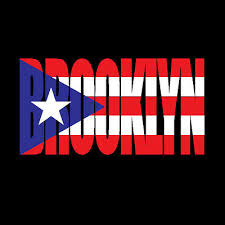 Puerto Rico Car Decal Sticker Brooklyn Letters With Flag 139 Ebay