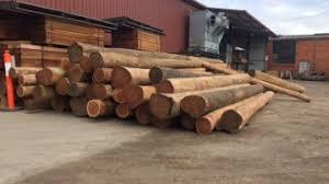 Timber Posts Timber Poles Outlast Timber