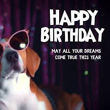 Happy Birthday Greetings Wishes Funny Dog Template Postermywall