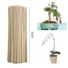 bamboo stick plant growth support rod