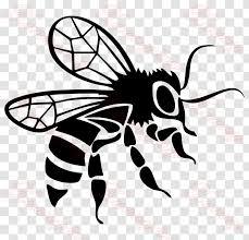 Car Bee Decal Bumper Sticker Arthropod Template Black Transparent Png