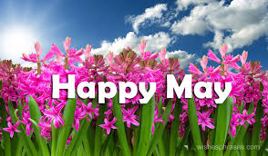 Hello May Wishes Messages Welcome May Quotes New Month