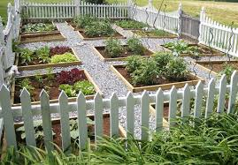 The Pros And Cons Of Raised Beds Preen
