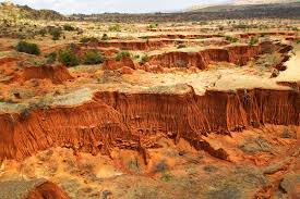 Soil erosion in Kenya. Credit: Martin Harvey / Alamy Stock Photo ...