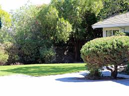 fake lawn middleburg florida home and