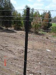 China Y Fence Post Israel Standard China Y Post Fence Post