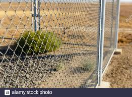 Wire Mesh Fencing High Resolution Stock Photography And Images Alamy
