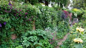 How To Create A Living Wall Ideas And Advice For Your Vertical Garden Real Homes