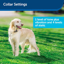 Petsafe Stubborn Dog In Ground Receiver Collar Petsuppliesplus Com