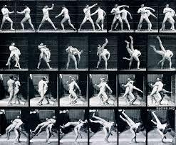 Eadweard Muybridge: Pugilists. Boxing (4)