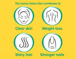 the lemon detox the lemon detox