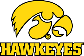 University Of Iowa Wall Decals Hawkeyes Tigerhawk Multicolored
