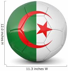 Algeria Soccer Ball 3d Wall Decal Wallmonkeys Com