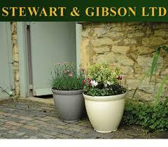 plant flower pot outdoor