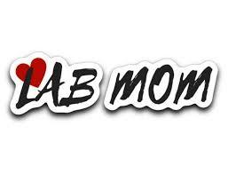 Labrador Retriever Decals Lab Mom From Lab Hq Lab Hq All Things Lab