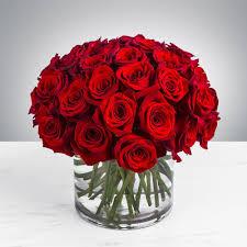 صور ورود جميلة اجمل مناظر الورود هل تعلم