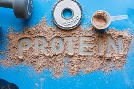 best protein powder for weight loss and